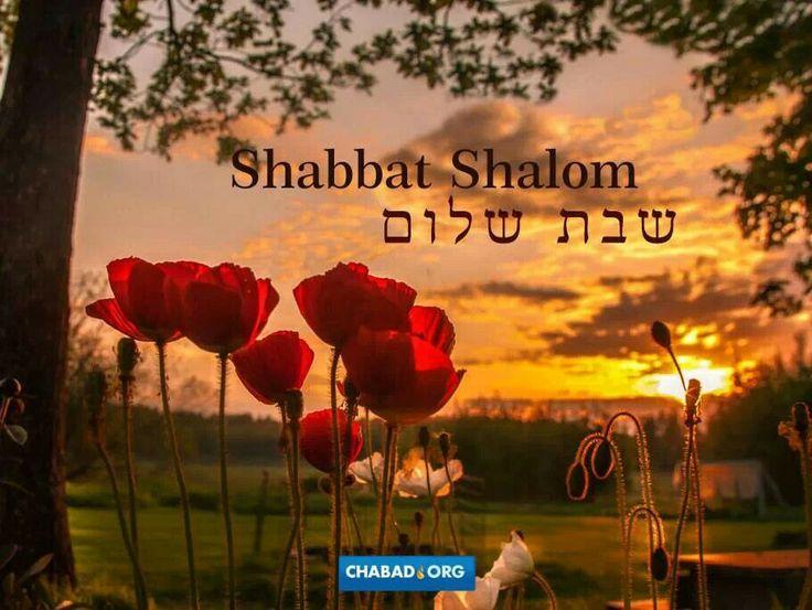 Shabbat187