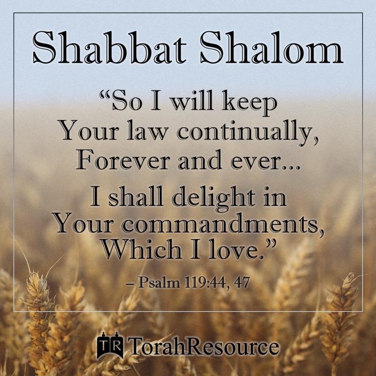 Shabbat191