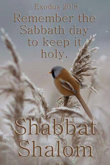 Shabbat135