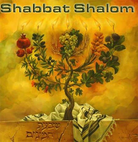 Shabbat41