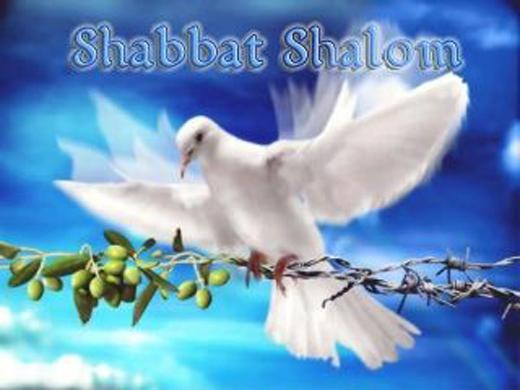 Shabbat49