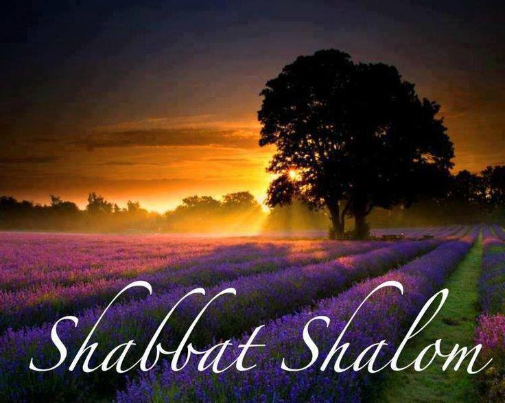 Shabbat214