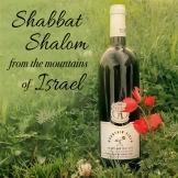 Shabbat153